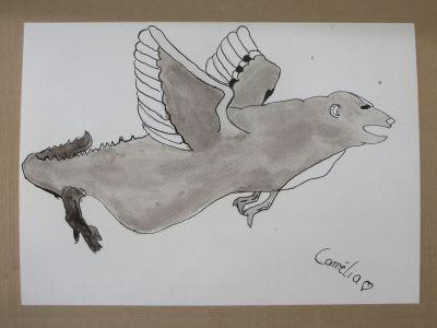 Crocours volant