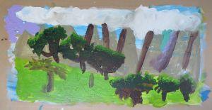 Forêt de pins