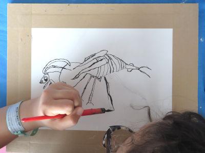 Shirine trace les pattes de son insecte à la plume