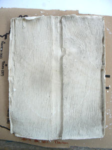 Le veinage du bois apparait