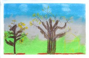 Les arbres ont perdu leurs feuilles