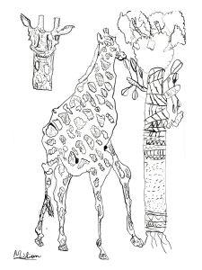 Dessiner une girafe