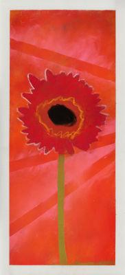 Fleur rouge sur fond orange