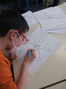 Un enfant dessine une fleur