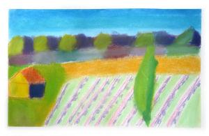 Paysage de Provence