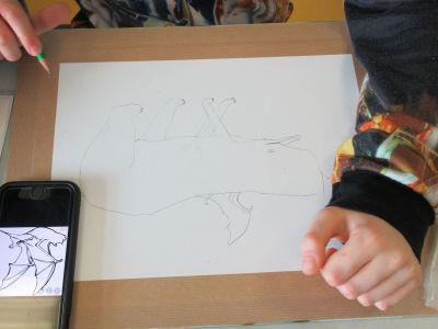 Commencer son dessin au crayon à papier