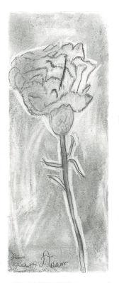 Apprendre à dessiner une fleur