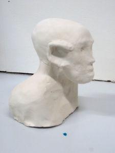 Modela d'un homme chauve